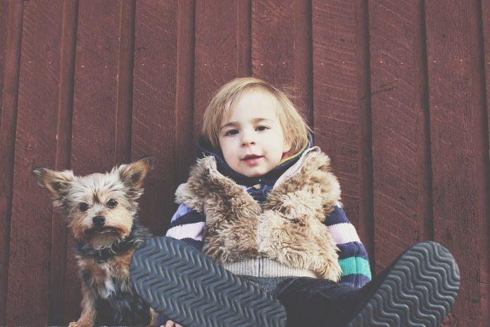 vivir perros con niños