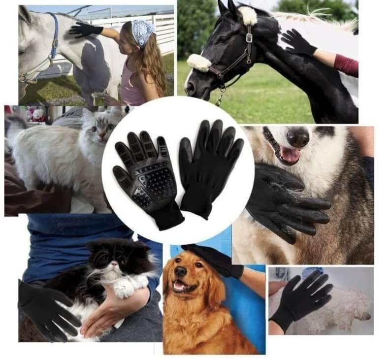 Guantes para Perros
