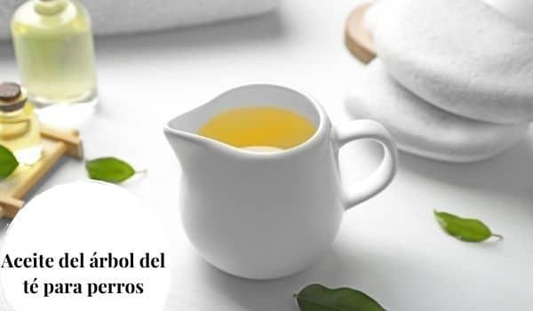 Aceite del árbol del té para perros