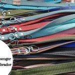 Consejos para escoger el collar de tu labrador ¿Arnés o collar?