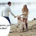 Compartir al perro: ¿es una buena idea?