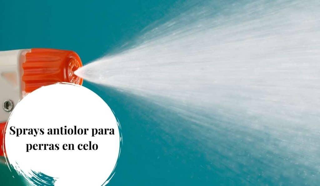 spray antiolor para perras en celo