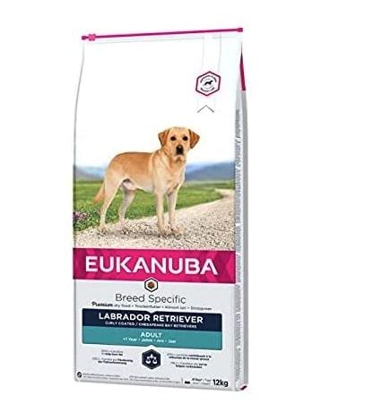 Alimento seco para perros labrador retriever adultos