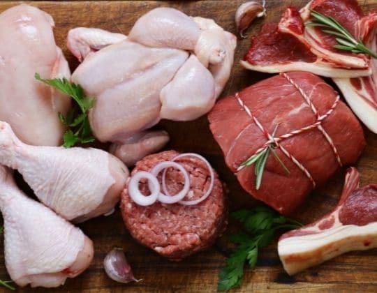 carne cruda para los perros